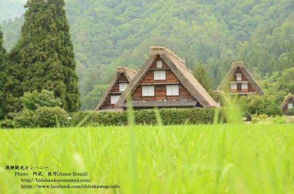 World Heritage Listed Shirakawago Pic from: 白川郷(Shirakawa-go) fb page